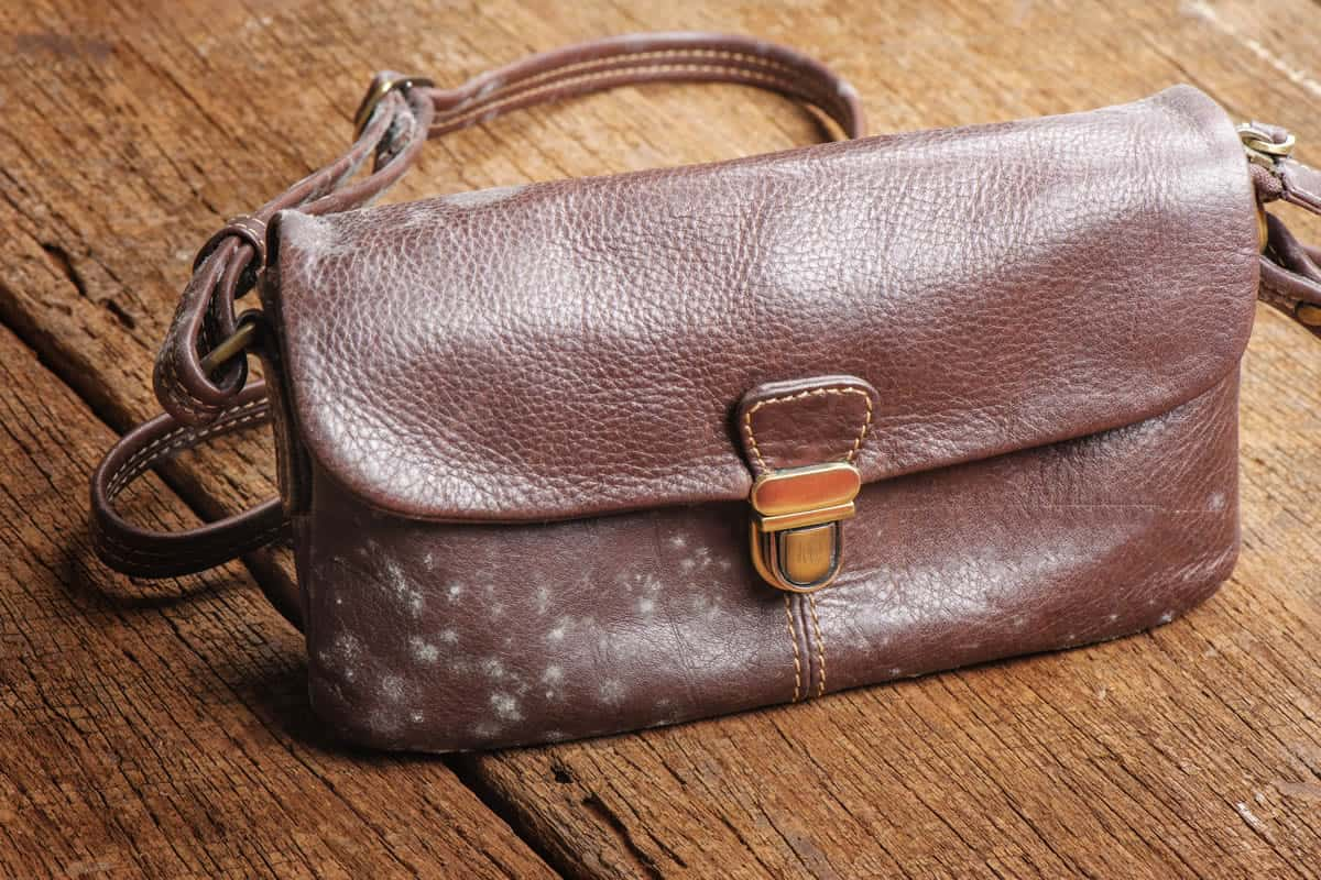 how to clean a leather bag with homemade remedies