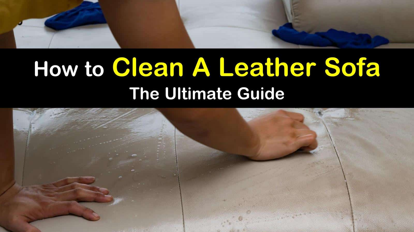 how to clean a leather sofa titleimg1