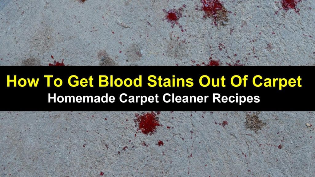 How To Get Blood Stains Out Of Carpet Homemade Carpet