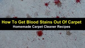 How To Get Blood Stains Out Of Carpet – Homemade Carpet Cleaner Recipes