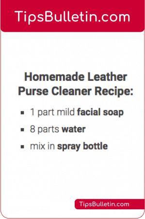 DIY Homemade Leather Purse Cleaner Recipe