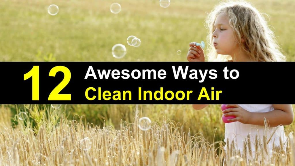 ways to keep our air clean Breathing easy: 10 ways to clean the air in your home  keep extra pillows in a closet, and minimize decorative ones dust mites love bedrooms (and beds) because.