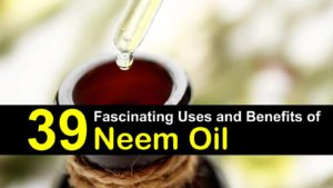 39 Fascinating Uses and Benefits Of Neem Oil