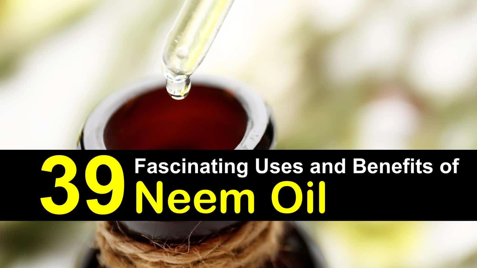 Neem Oil Benefits | ecogreenlove