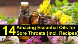 14 Amazing Essential Oils for Sore Throat { Incl. Recipes }