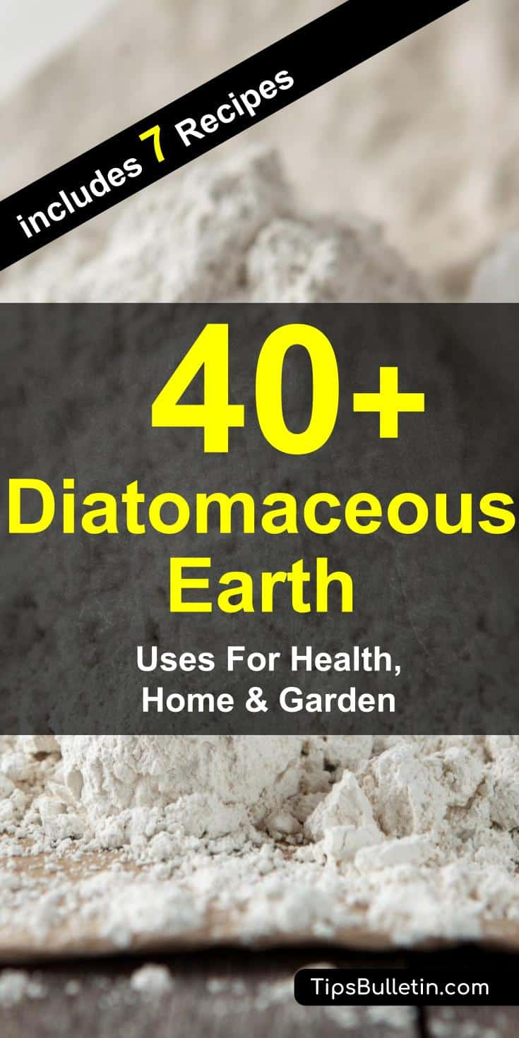 vs bugs bug diatomaceous bed watch earth youtube