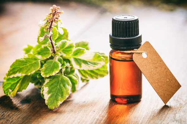 Tea tree oil is one way of how to heal canker sores fast.
