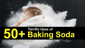 50+ Terrific Uses of Baking Soda
