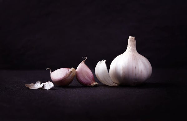 Use garlic and keep squirrels out of fruit trees.