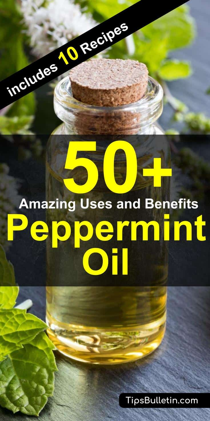 50 Amazing peppermint oil uses and benefits. From how to make to uses of peppermint oil for skin, hair as well as repellent for mice, bugs and spiders. Includes 10 DIY peppermint oil recipes.