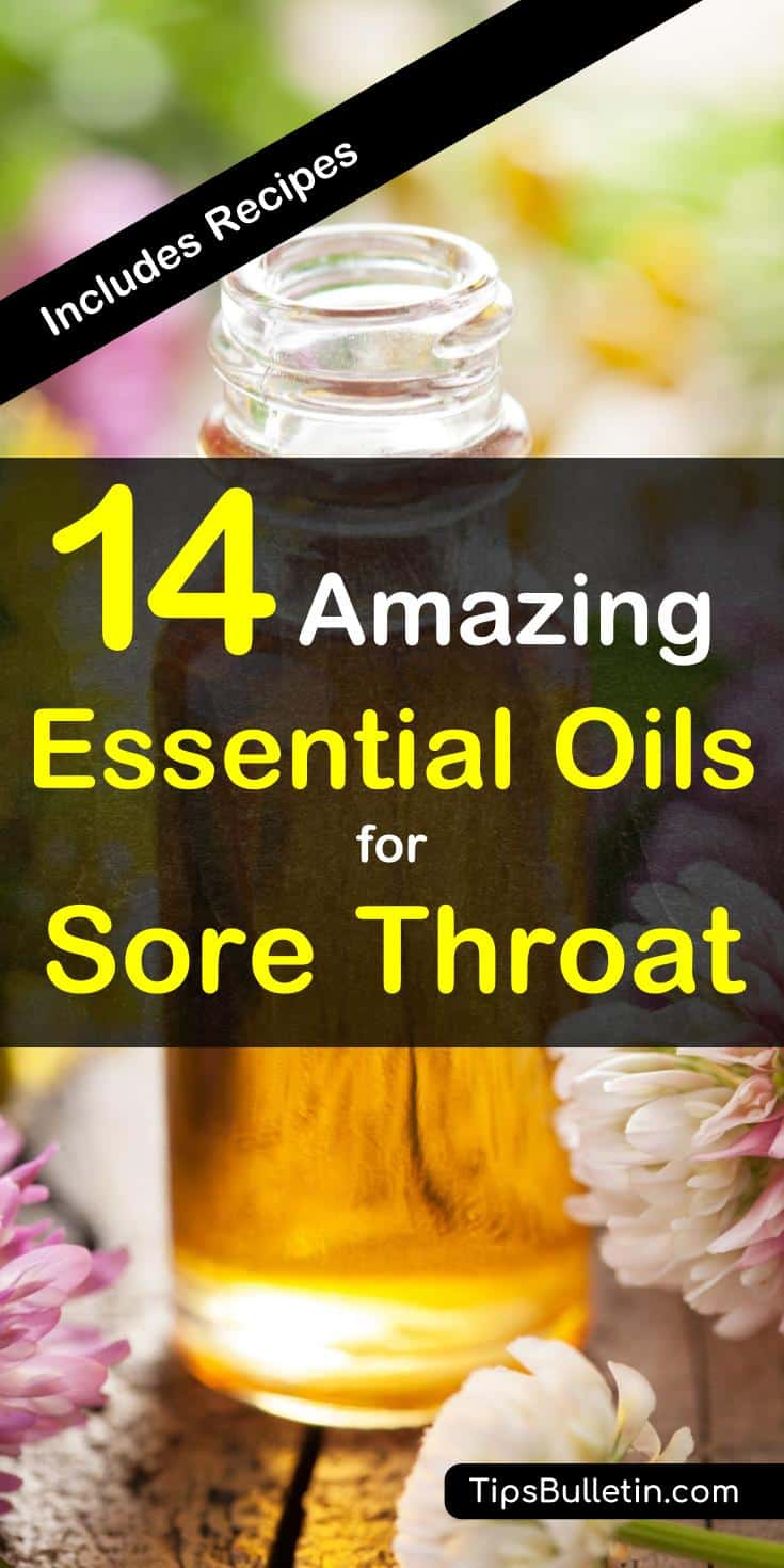 14 amazing essential oils for sore throat - including recipes. With easy to make recipes for an essential oil rub, tea, cough syrup recipe and a basic gargle recipe.