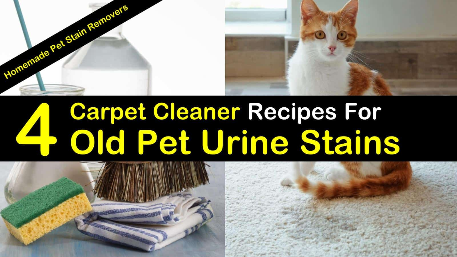 4 Best Carpet Cleaner Recipes For Old Pet Urine Stains