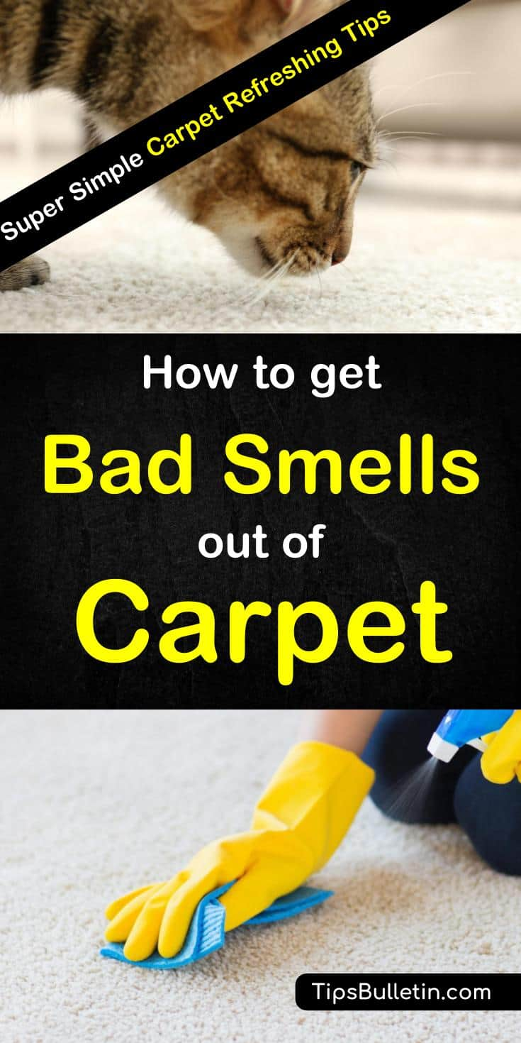 Hands-on tips for how to get bad smells and odors out of the carpet. Learn how to remove offensive smells like dog urine and pet odors using simple ingredients you can find in your pantry like white vinegar and baking soda. Get your carpets smelling great again. #carpetrefreshers #carpetcleaning