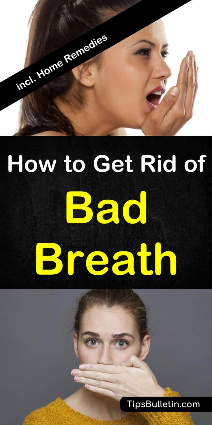How To Get Rid Of Bad Smell In House How To Get Rid Of Bad