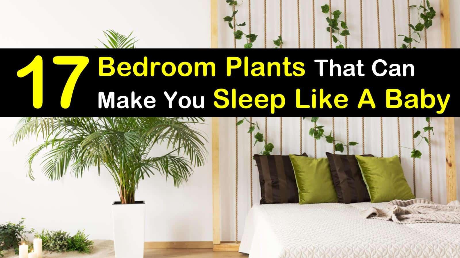 bedroom plants titleimg1