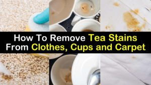 how to remove tea stains from clothes cups carpet upholstery titleimg1