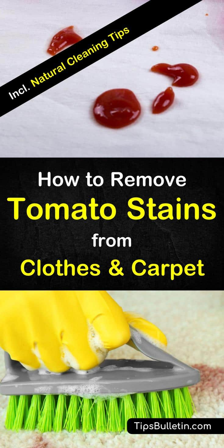 Learn How To Remove Tomato Stains From Clothes And Carpet Including Get Rid