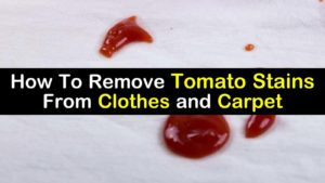 how to remove tomato stains titilimg1
