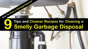 Tips and Cleaner Recipes for Cleaning a Smelly Garbage Disposal titleimg1