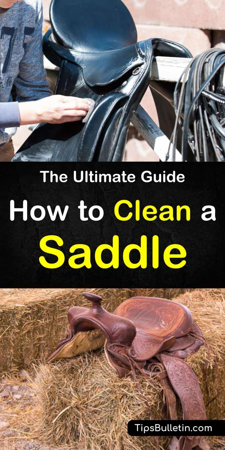 Find out how to clean a saddle with these awesome DIY tips. Learn about the best products to use on your leather saddle and how to clean all your horse tack and pad. Don't allow your horses tack to become damaged with these simple techniques for cleaning a saddle. #cleansaddle #cleanleathersaddle