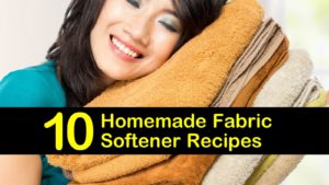 homemade fabric softener titleimg1
