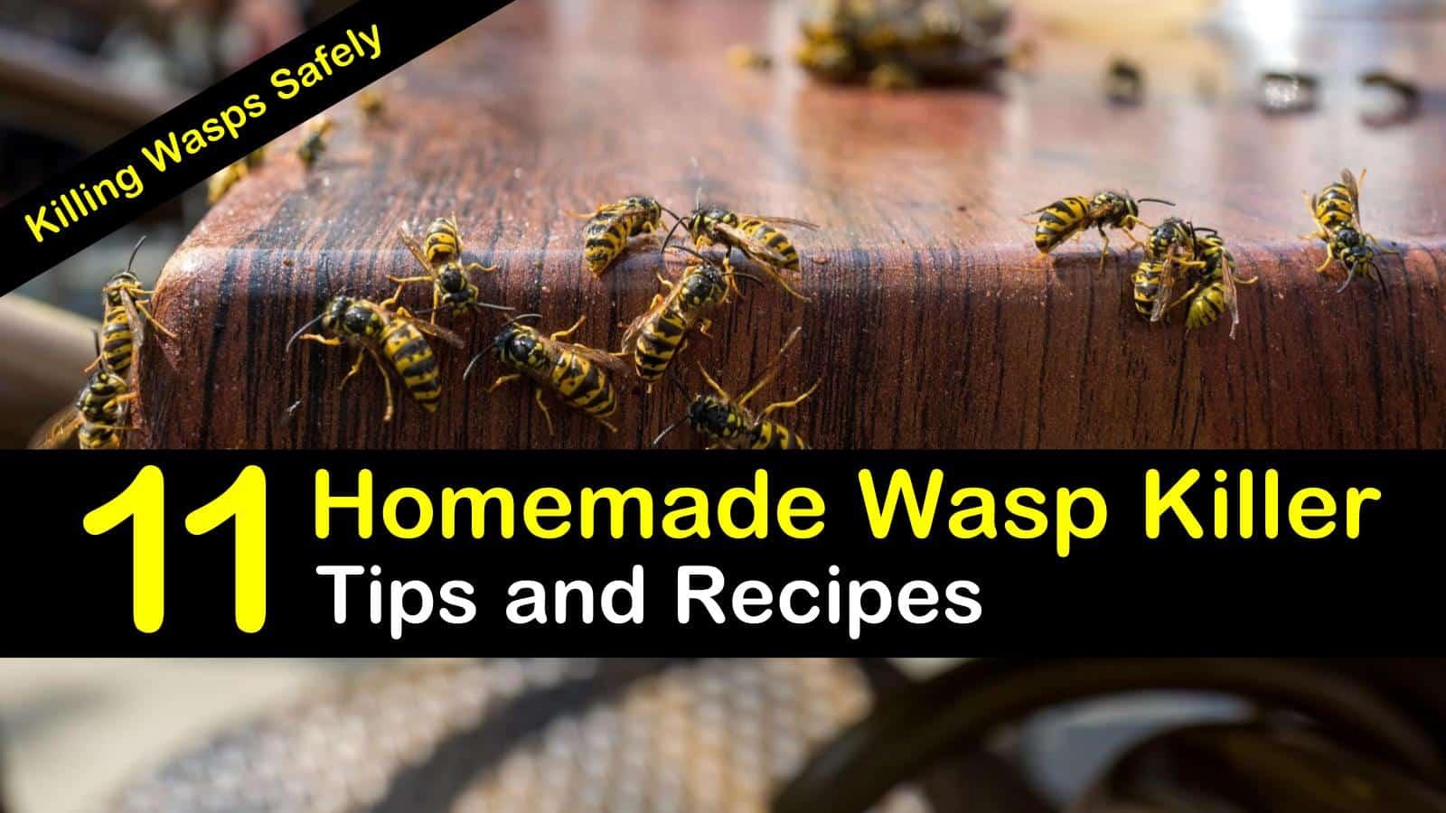 Killing Wasps Safely - 11 Homemade Wasp Killer Tips and Recipes