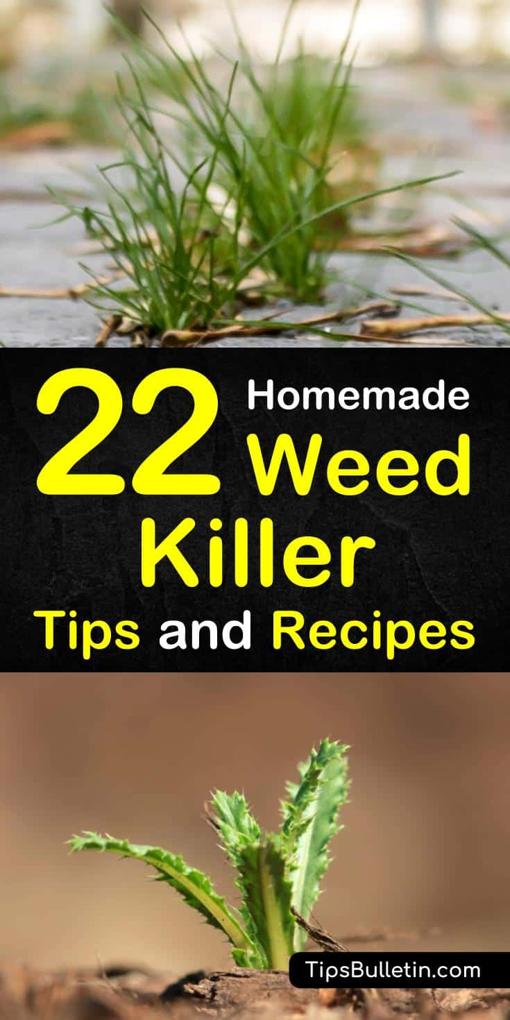 Learn how to create a homemade weed killer recipe for your flower beds, yards, and driveways. Combine natural ingredients to make sprays safe for grass, for gardens, and for lawns. #weeds #weedkiller