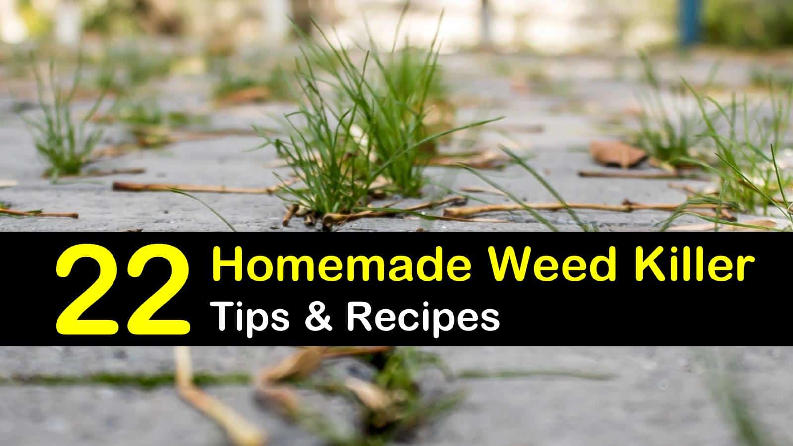 Homemade Weed Killer Recipes: 22 DIY Tips for Killing Weed