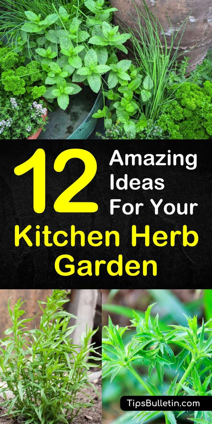 Discover 12 easy-to-grow herbs for your kitchen garden. Learn which plants work best in small spaces, in containers, and hanging planters. With numerous ideas on how to make your own DIY mason jar planters that work well on windowsills and outdoor patio spaces. #herbsforlife, #kitchengarden, #diy