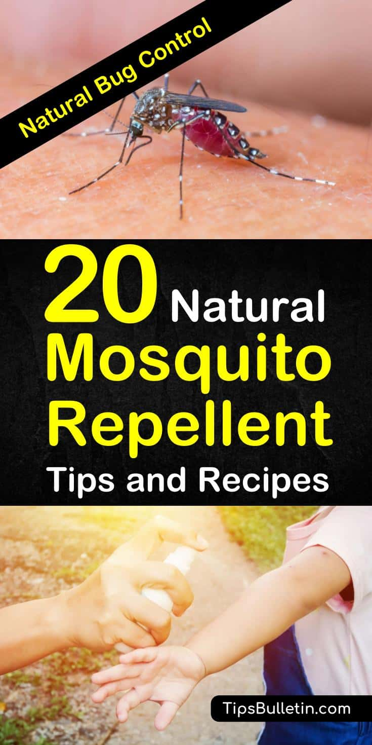 Learn about diy homemade bug spray recipes you can make while your indoor to prepare for late-night mosquito bites in backyards. Prepare the best spray using our home remedies for babies and pets that we've gathered for you. #bugspray #mosquitoes #repellent
