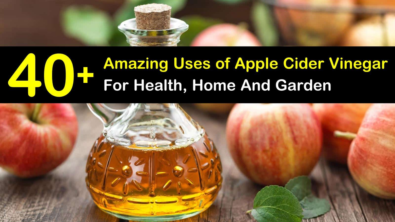 40+ Amazing Uses of Apple Cider Vinegar For Health, Home and