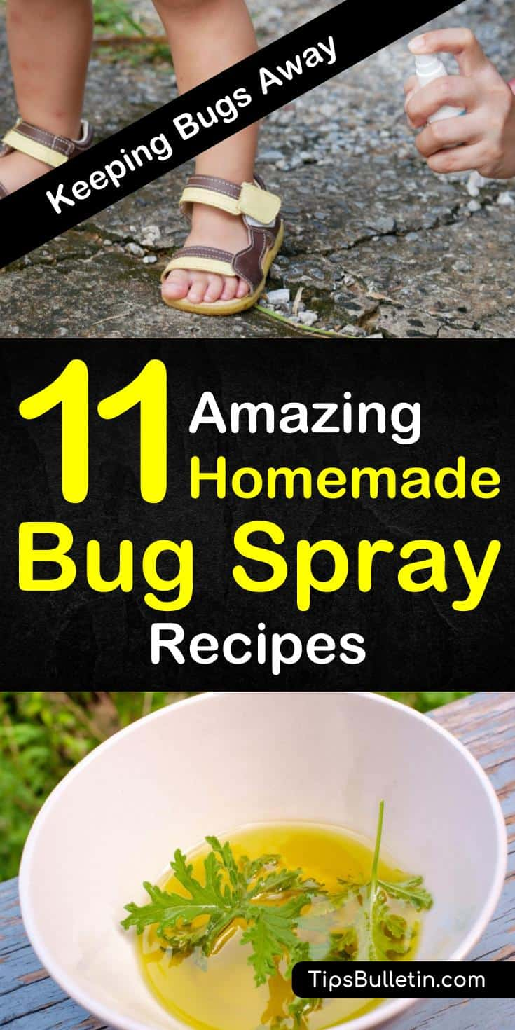 Learn how to keep the bugs, flies, and mosquitoes away by using essential oils, water, apple cider, and witch hazel as a homemade bug spray. Know how to concoct an all-natural pest control for kids, for plants, for home, and for yard use. #bugbites #diyrepellent #homemademosquitospray