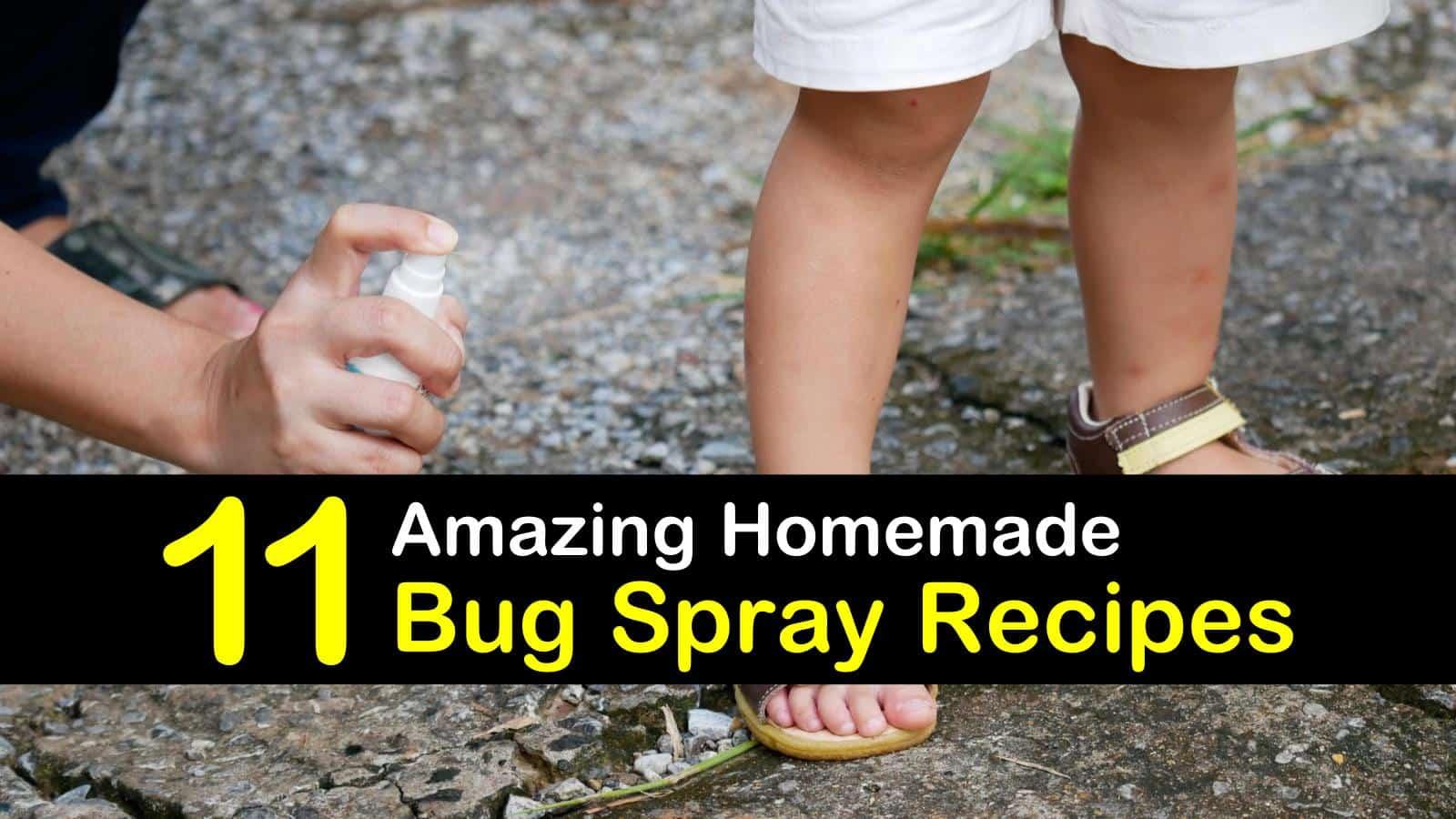 homemade bug spray titleimg1