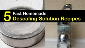 homemade descaling solution titleimg1