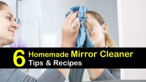 homemade mirror cleaner titleimg1