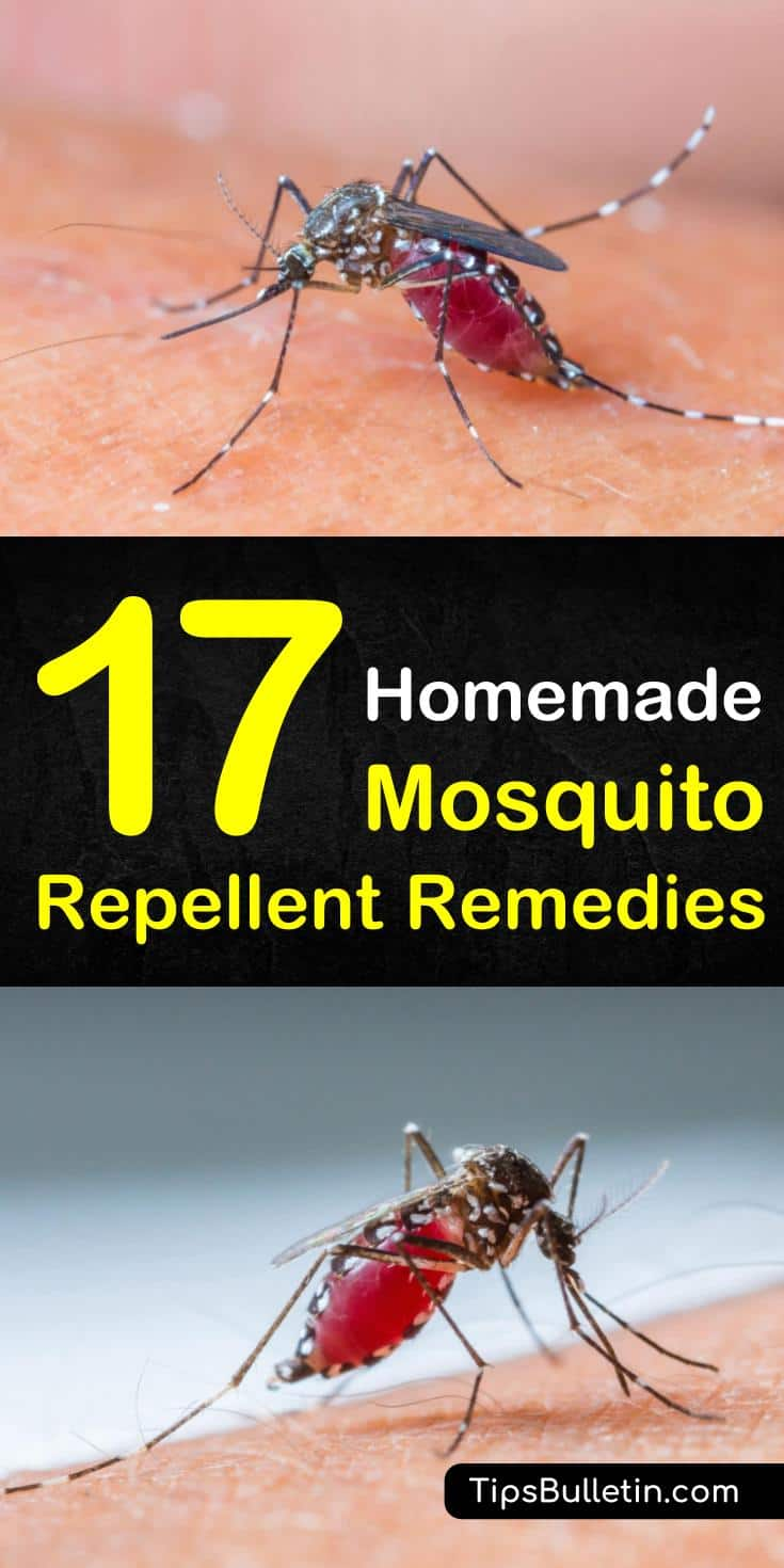 Discover how to make natural mosquito repellent using natural and non-toxic ingredients with essential oils, apple cider vinegar, and other natural ingredients. These recipes are safe to use for kids, on skin, in the yard, and as a natural bug spray. #mosquitos #DIY #repellent