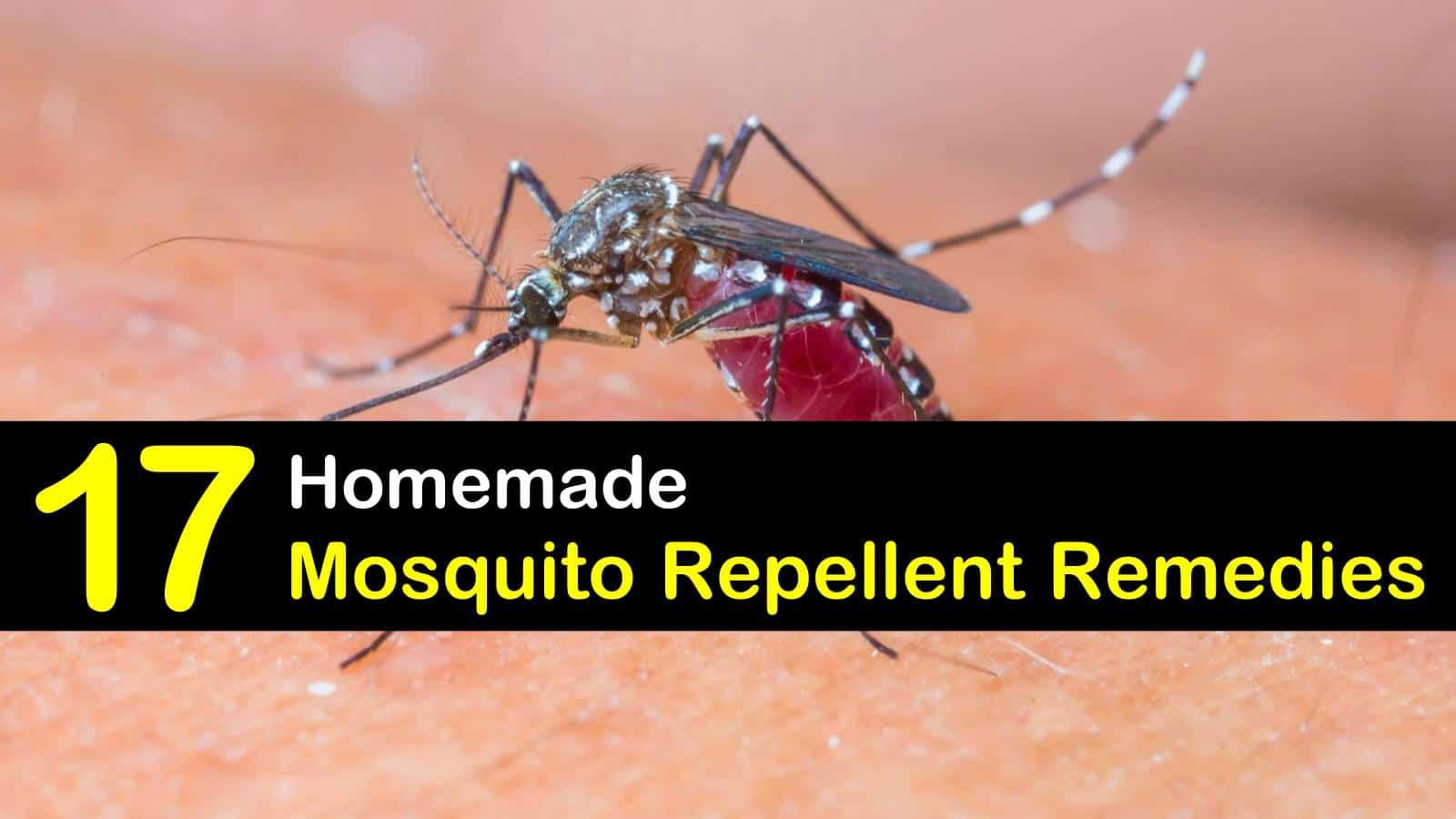 17 Simple DIY Mosquito Repellent Remedies
