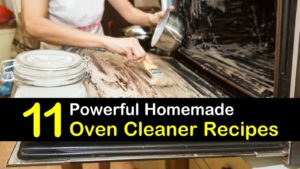 homemade oven cleaner titleimg1