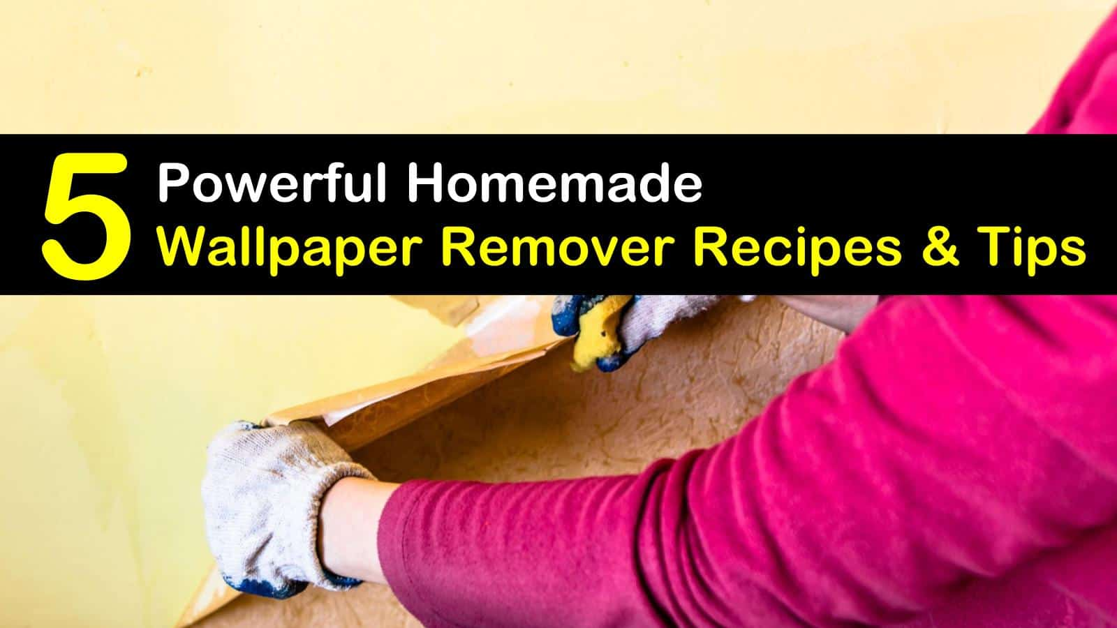 homemade wallpaper remover titleimg1