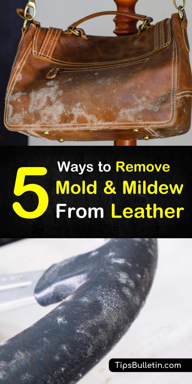 Find out how to remove mold from leather goods using proven stain removers like rubbing alcohol, baking soda, and vinegar! These cleaning tips will have your leather items looking good as new! #cleaningtips #leathercleaner #stainremovers
