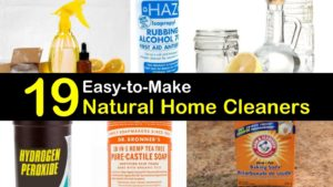 natural cleaners titleimg1