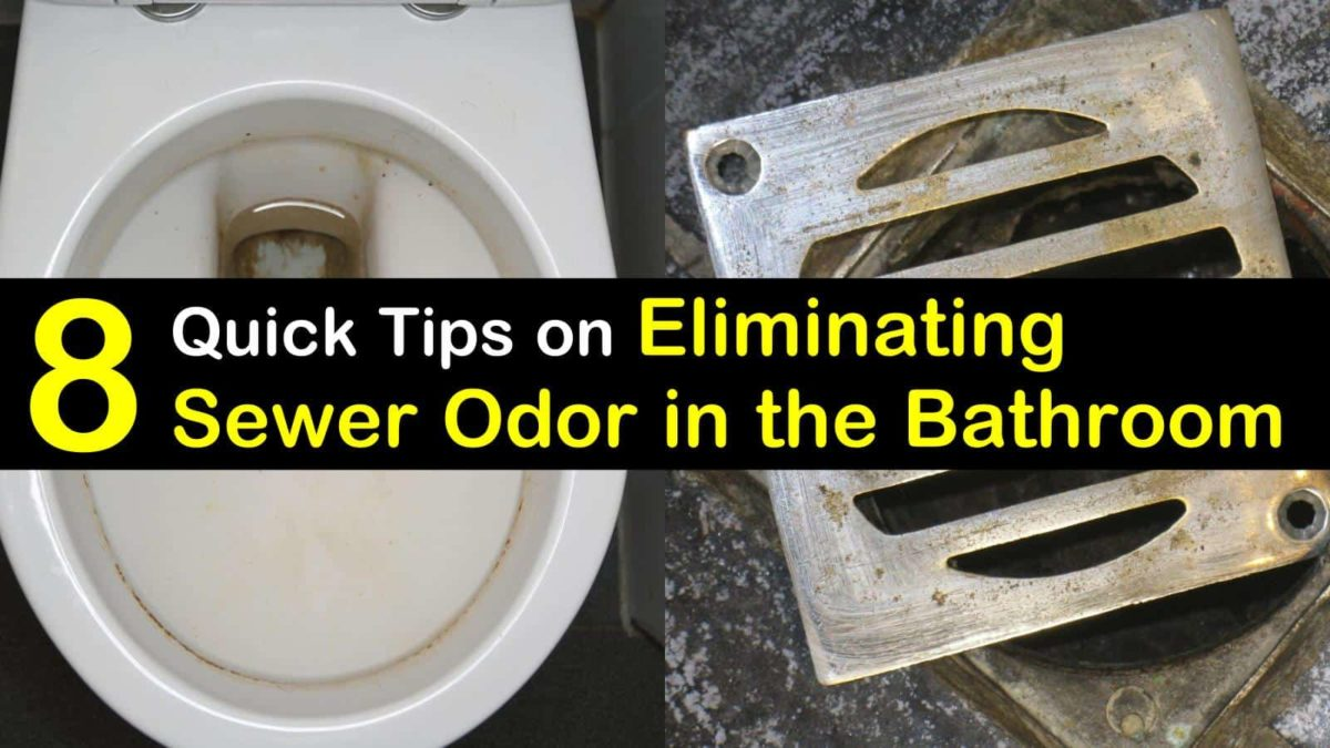 How Get Rid Sewer Smell The Bathroom Quick Tips Eliminating Odor
