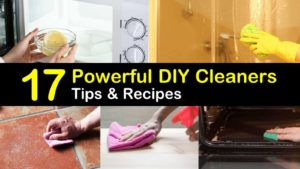 diy cleaners titleimg1