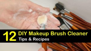 DIY makeup brush cleaner titleimg1