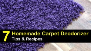 homemade carpet deodorizer titleimg1
