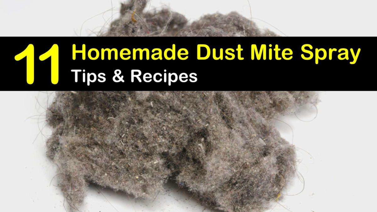 Getting Rid Of Dust Mites 11 Homemade Dust Mite Spray Tips And Recipes