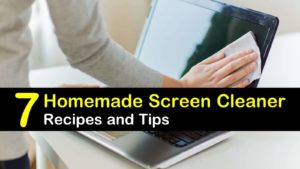 homemade screen cleaner titleimg1