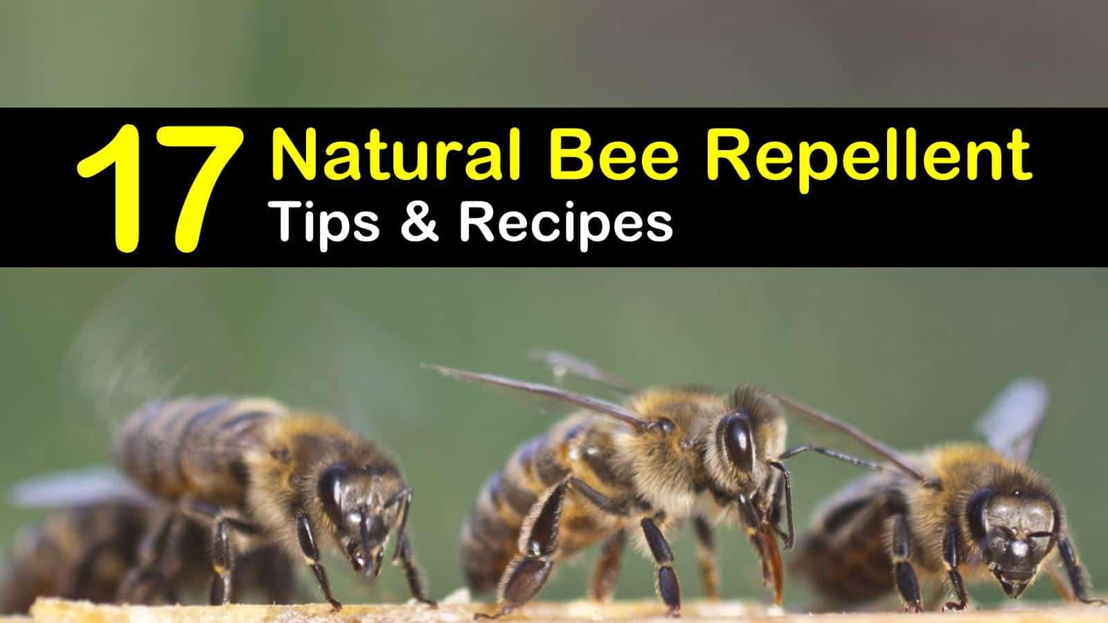 natural bee repellent titleimg1