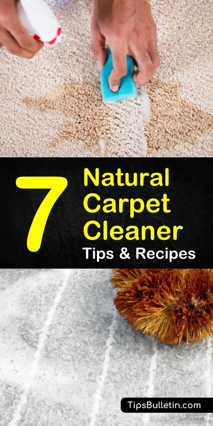 Know how to clean carpets at home using products like hydrogen peroxide, baking soda, and essential oils. These natural carpet cleaner recipes will teach you how to make homemade sprays, stain removers, and cleaning solution for machine cleaners. #diy #carpetcleaner #natural