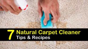 natural carpet cleaner titleimg1